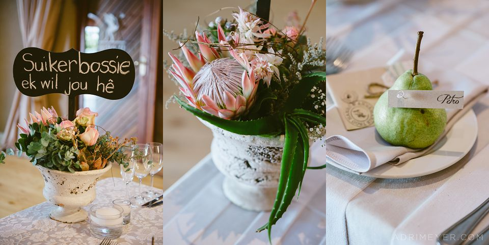 Adri Meyer Wedding Photography Daria Durbanville_0051