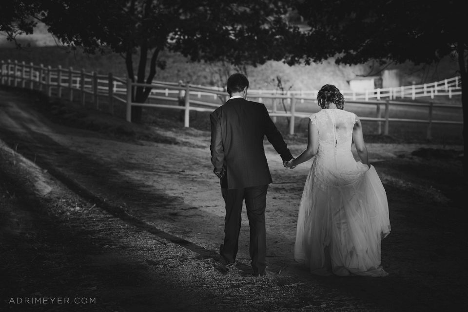 Adri Meyer Wedding Photography Langkloof Roses_0049