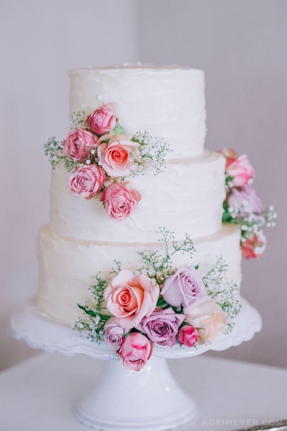Adri Meyer Wedding Photography Langkloof Roses_0086